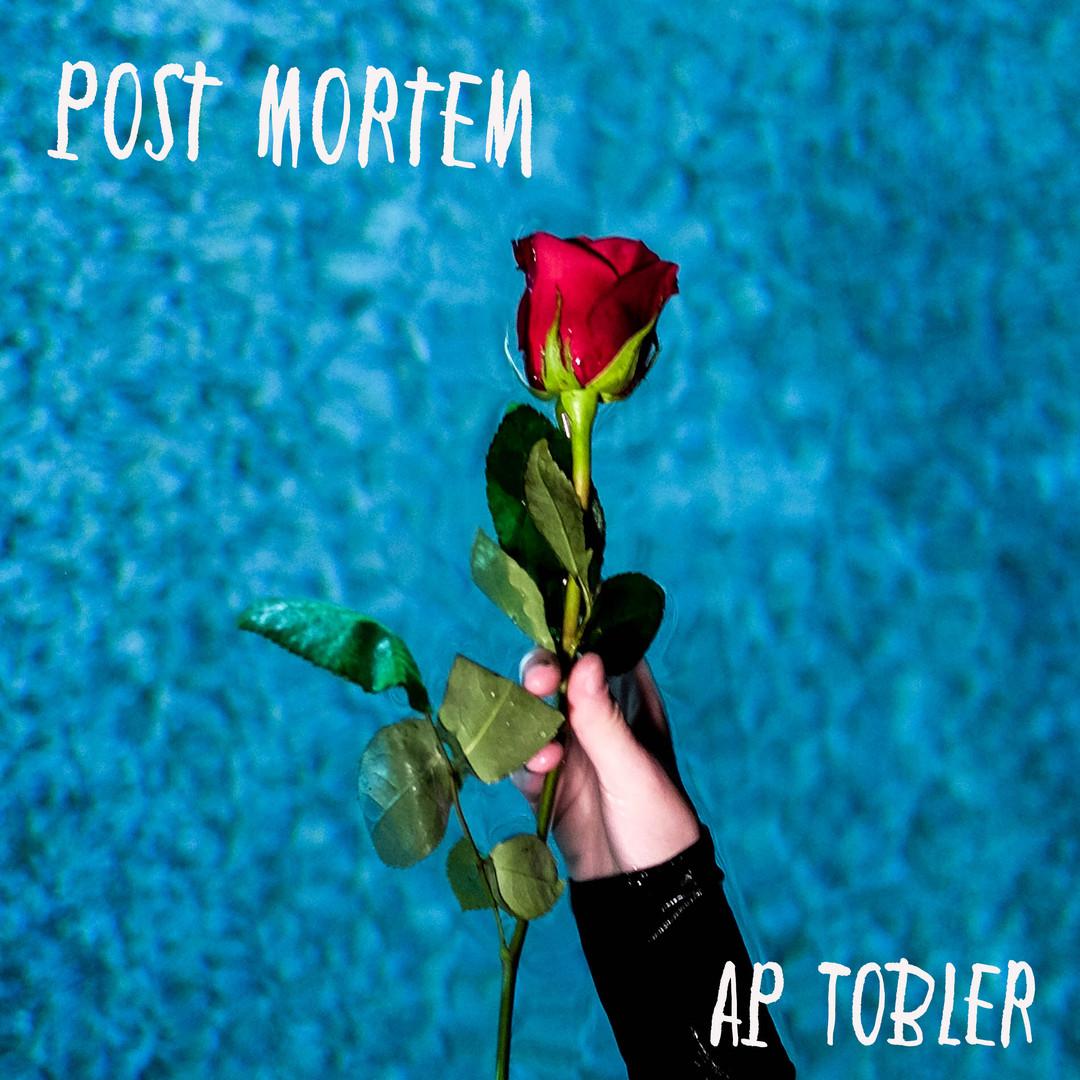 Post Mortem Album Art