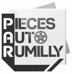 Pieces_Auto_Rumilly_grisé