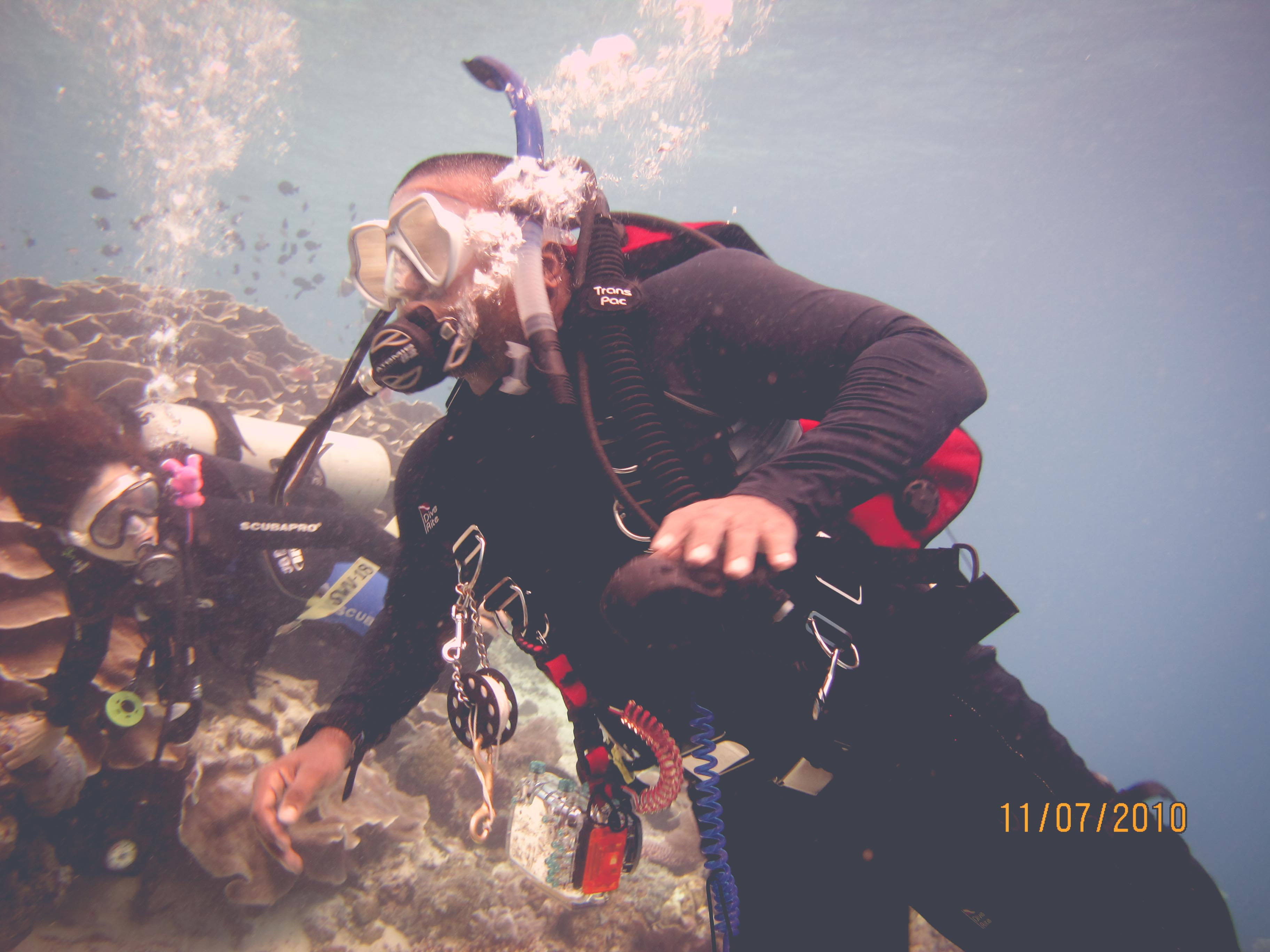 Warm Water Divers