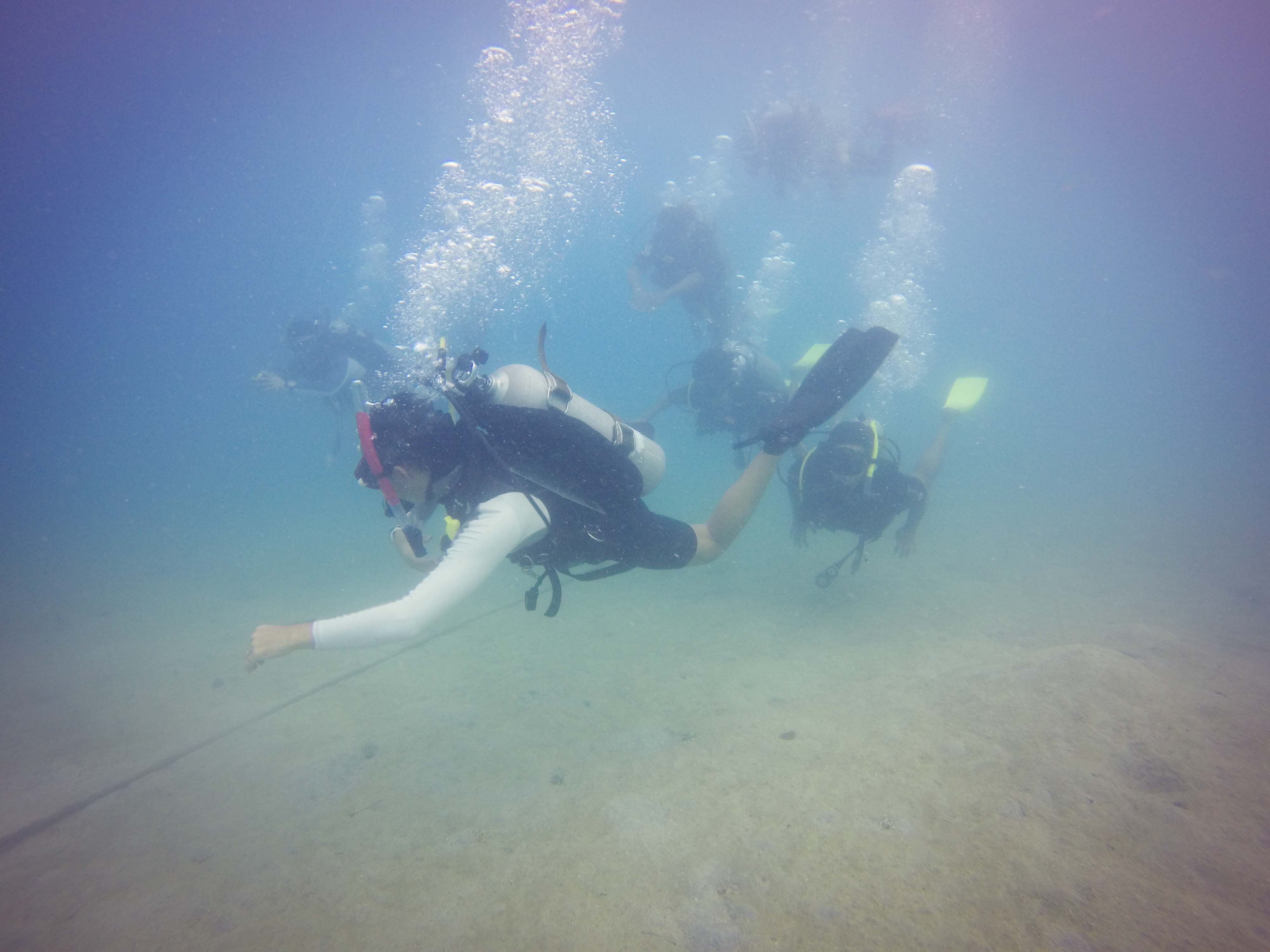 Open Water Course