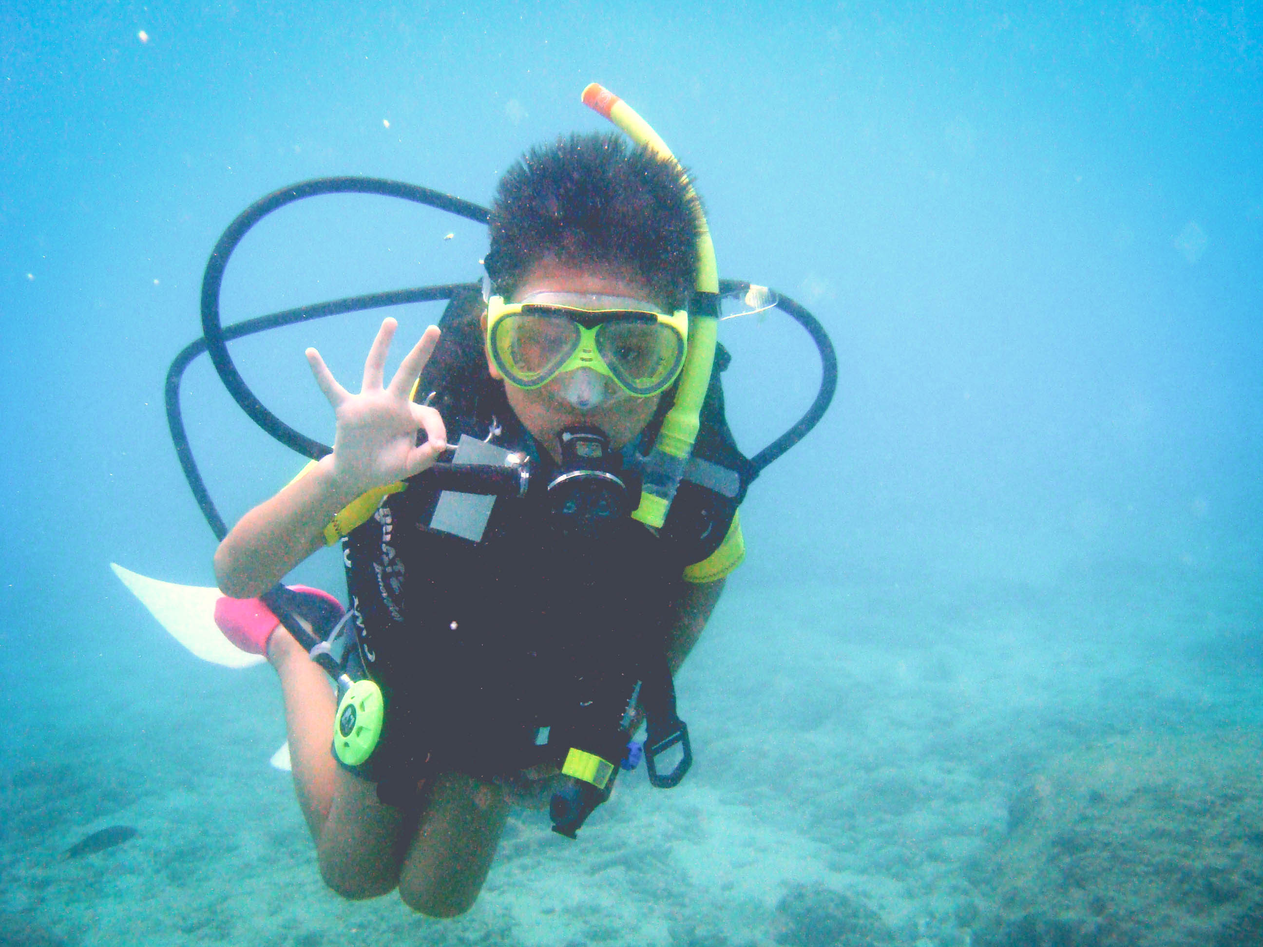 Seal Team Diver