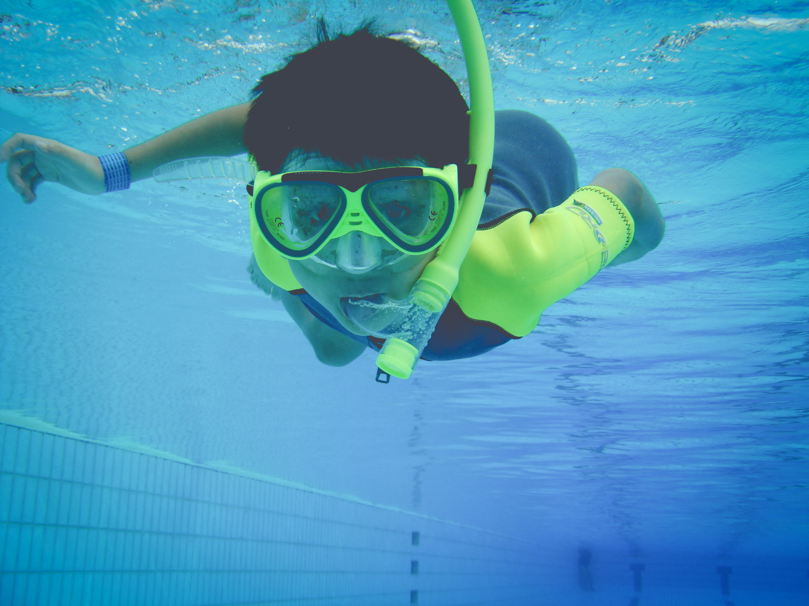 Discover Snorkeling