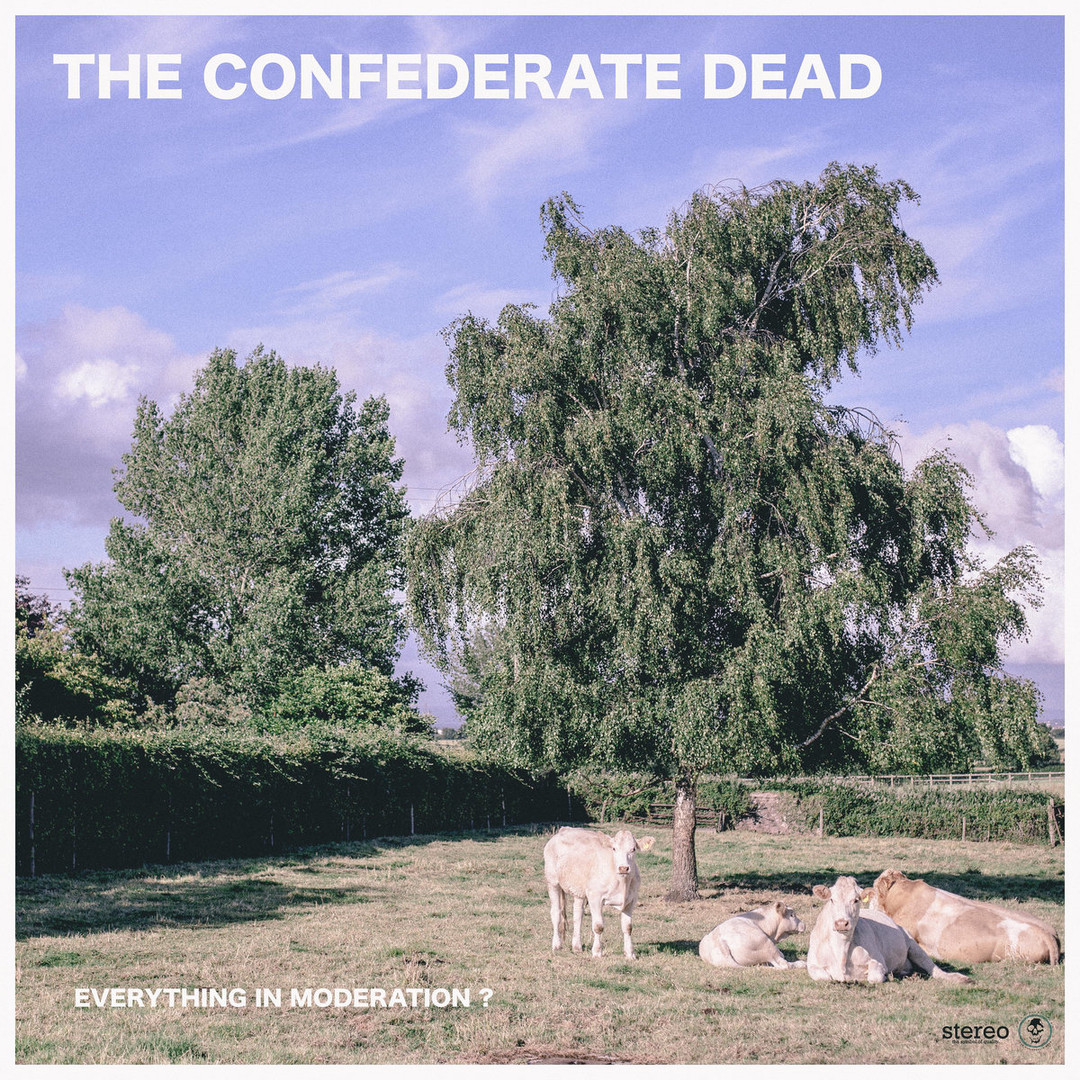 The Confederate Dead - Everything In Moderation