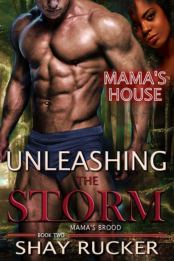Unleashing-The-Storm-Kindle.jpg