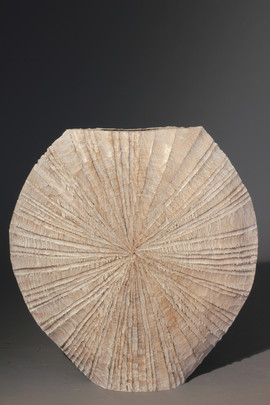 Rayed Disc