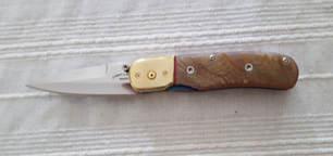 Liner Lock Folding Knife