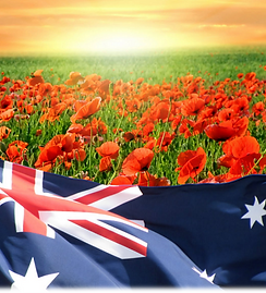 poppies2.png