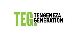 TEG-Uyolo.png