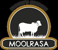 Moolrasa_logo_web.png