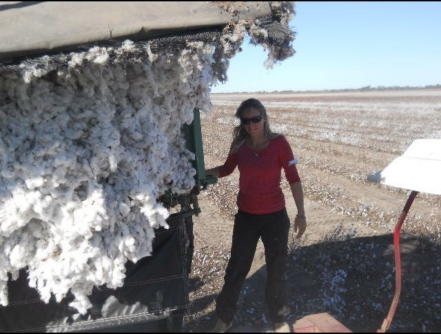 Time For Some Cotton Picking!