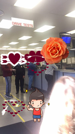 DMV 准备考试