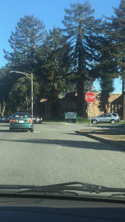 (加州 驾照)-注意stop sign