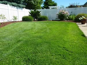Lawn and boarder maintenance