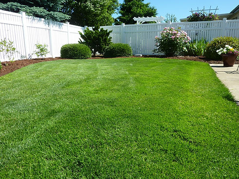 Lawn Care Amarillo, TX
