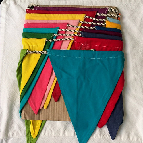 Bunting - Coloured