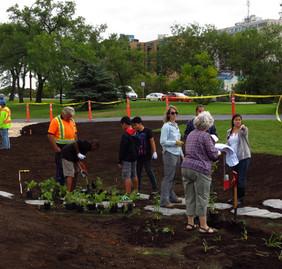 Volunteers planting the rain garden