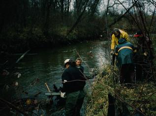 Nov 1990 Cleanup