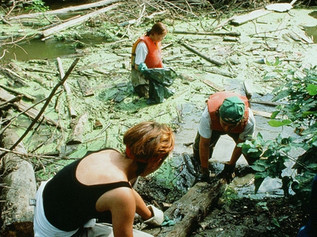 1994 Green Team