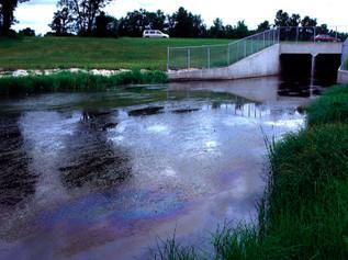 Oil Spill in River