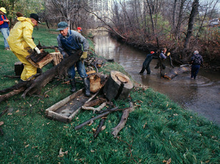 1994 Cleanup near Morrow Ave.