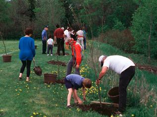 1996 Lafleche Greening
