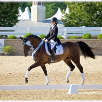 Jenna aboard Leslie Burket's Paddington at the 2015 U.S. Dressage Festival of Champions  Lamplight Equestrian Center  Photo Credit: StarWest Dressage