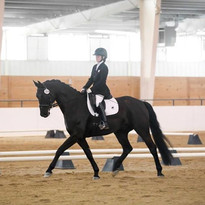 Jenna riding Dante Divino at his first competition  Sunbury, Ohio  Photo Credit: Winslow Photography