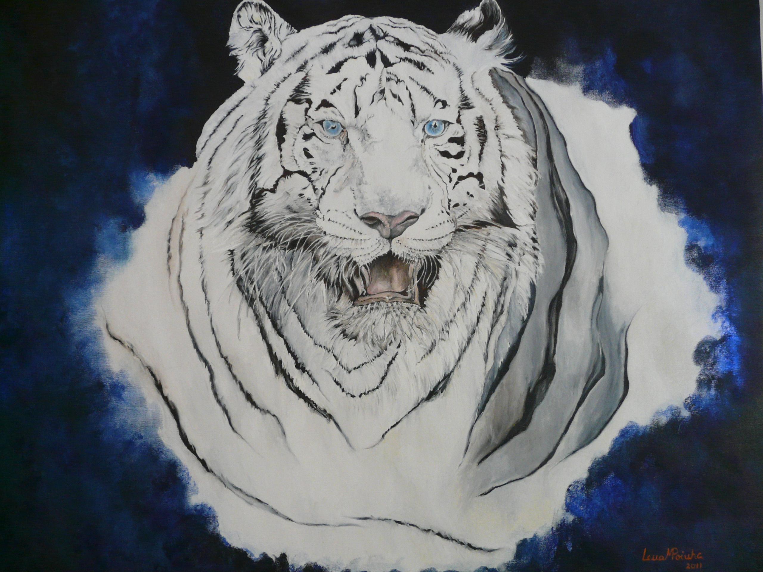 Tigre do Paulinho