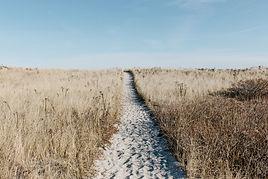 prairie-1246633.jpeg