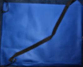 website pic of big blue bag nov.jpg