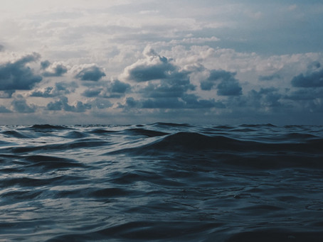 Baptismal Living Amid Division & Chaos