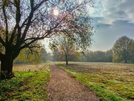 Let's Walk to Emmaus