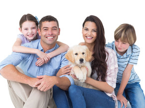 Animal de estimação – o novo membro da família!