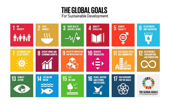 the-global-goals-grid-color smaller.jpg