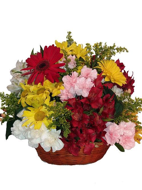 Cesta mista média, Flores de Campo, Gérberas e Astromélias