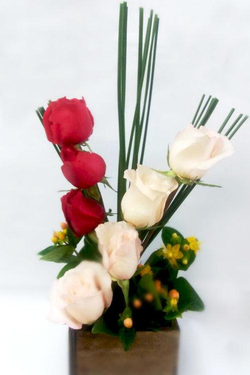 Duplo de Rosas