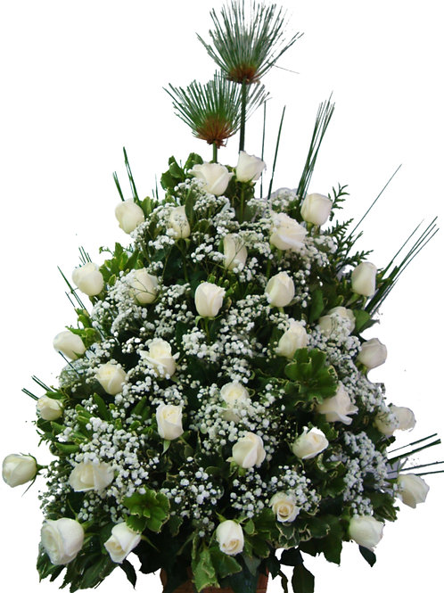 36  Rosas com chuva de prata