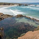 bigs-Pudding-Creek-beach-Tide-Pools-in-F