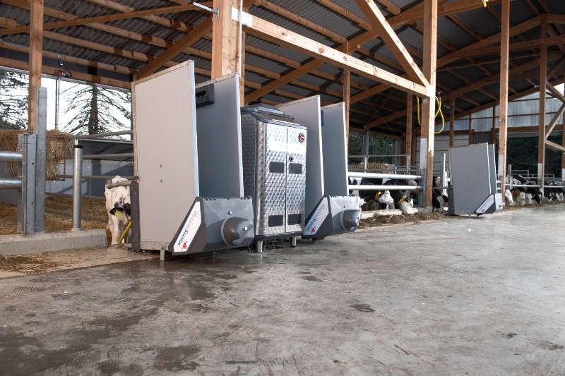 Calf-Expert-and-Hygiene-Installations