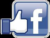 Facebook Logo Transparent Background.png