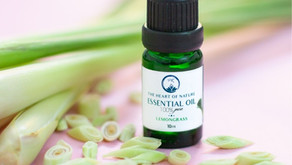 Get to know Lemongrass in this Ingredient Spotlight