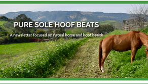 Pure Sole Hoof Beats - Spring into 20% off!
