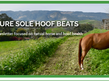 Pure Sole Hoof Beats - Get Ready for Summer!