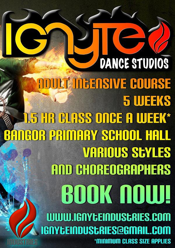 ignyte dance studios fun shire hip hop casual dance jazz ballet urban shire so you think you can dance