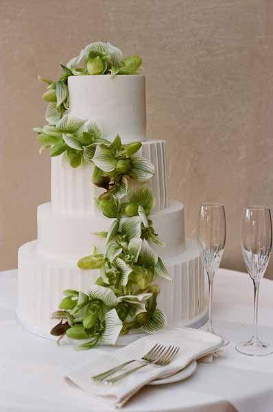 elegance wedding ignyte industries plan marriage celebrant DJ MC dance wedding cars flowers hair stylist