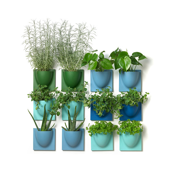 Combination of blue and green VertiPlant