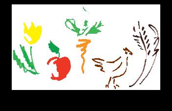 11Coop art .png
