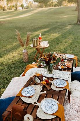 sonoran-picnics-boho-brunch-picnic-5995.