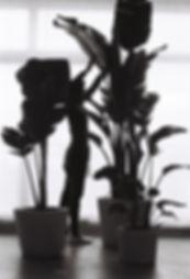 yasmin-bawa-vessel-planter-trio-01.JPG