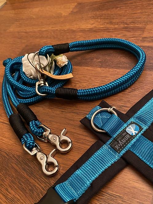 Halsband + Leine Set in petrol-schwarz